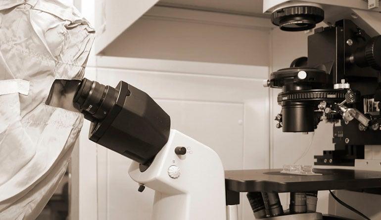 JAI-3-CMOS-Cameras-For-Microscopy-Imaging